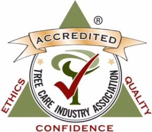 tcia-accreditation